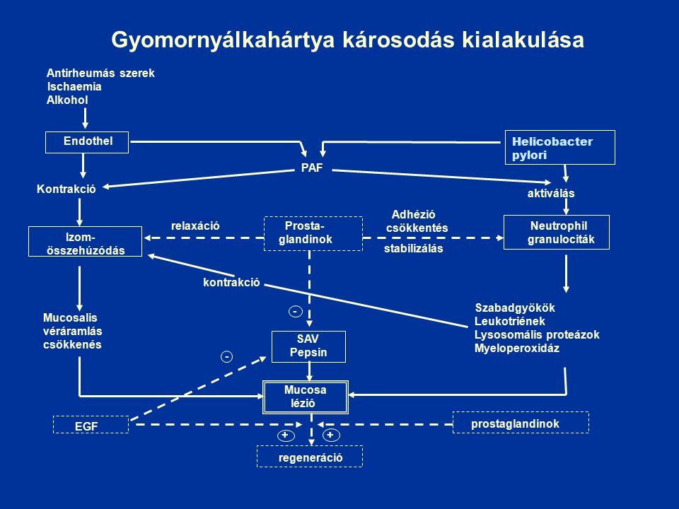 1983., Lancet – 2005. Nobel-díj
