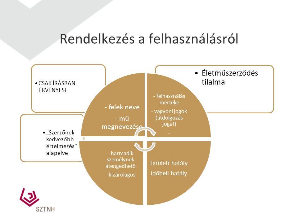 Rendelkezés a felhasználásról CSAK ÍRÁSBAN ÉRVÉNYES.
