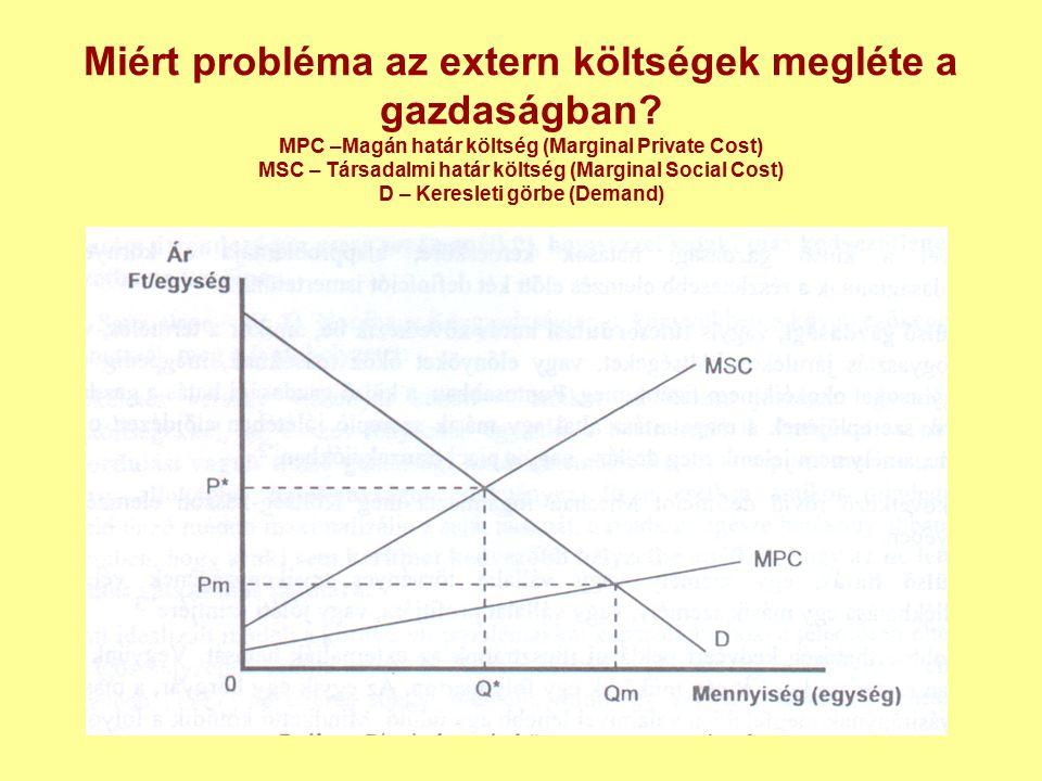 Miért probléma az extern költségek megléte a gazdaságban.
