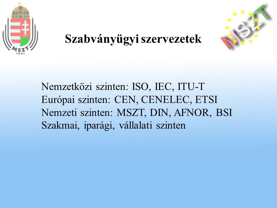 Nemzetközi szinten: ISO, IEC, ITU-T Európai szinten: CEN, CENELEC, ETSI Nemzeti szinten: MSZT, DIN, AFNOR, BSI Szakmai, iparági, vállalati szinten Szabványügyi szervezetek