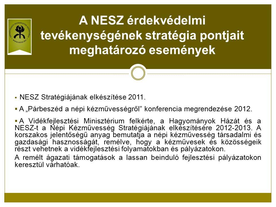  NESZ Stratégiájának elkészítése 2011.