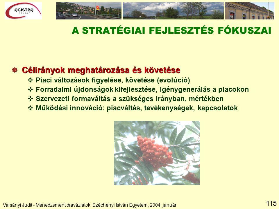 115 A STRATÉGIAI FEJLESZTÉS FÓKUSZAI  Célirányok meghatározása és követése vPiaci változások figyelése, követése (evolúció) vForradalmi újdonságok kifejlesztése, igénygenerálás a piacokon vSzervezeti formaváltás a szükséges irányban, mértékben vMűködési innováció: piacváltás, tevékenységek, kapcsolatok Varsányi Judit - Menedzsment óravázlatok.