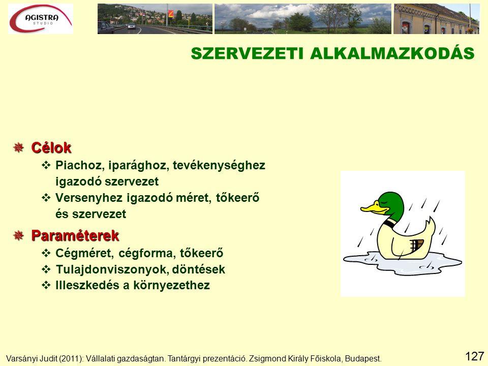 127 SZERVEZETI ALKALMAZKODÁS  Célok vPiachoz, iparághoz, tevékenységhez igazodó szervezet vVersenyhez igazodó méret, tőkeerő és szervezet  Paraméterek vCégméret, cégforma, tőkeerő vTulajdonviszonyok, döntések vIlleszkedés a környezethez Varsányi Judit (2011): Vállalati gazdaságtan.