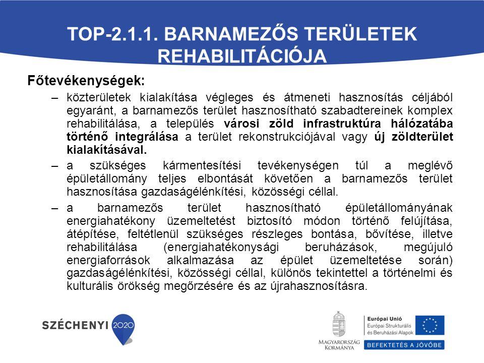 TOP-2.1.1.