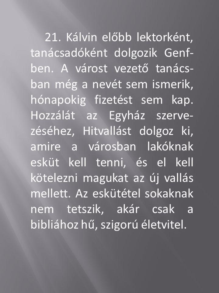 21.Kálvin előbb lektorként, tanácsadóként dolgozik Genf- ben.