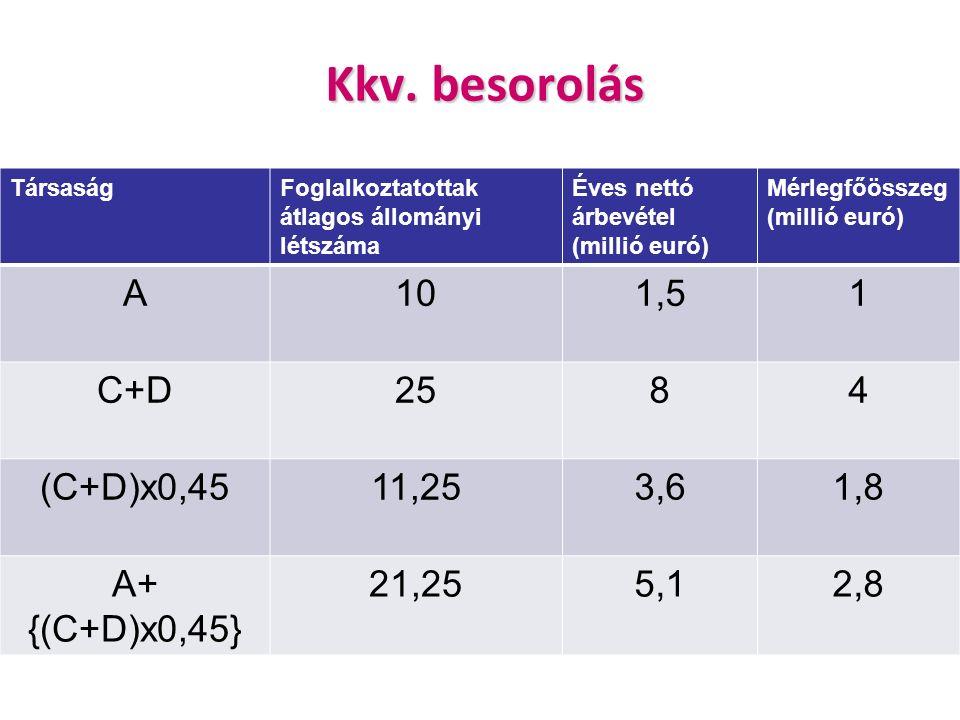 Kkv. besorolás TársaságFoglalkoztatottak átlagos állományi létszáma Éves nettó árbevétel (millió euró) Mérlegfőösszeg (millió euró) A101,51 C+D2584 (C