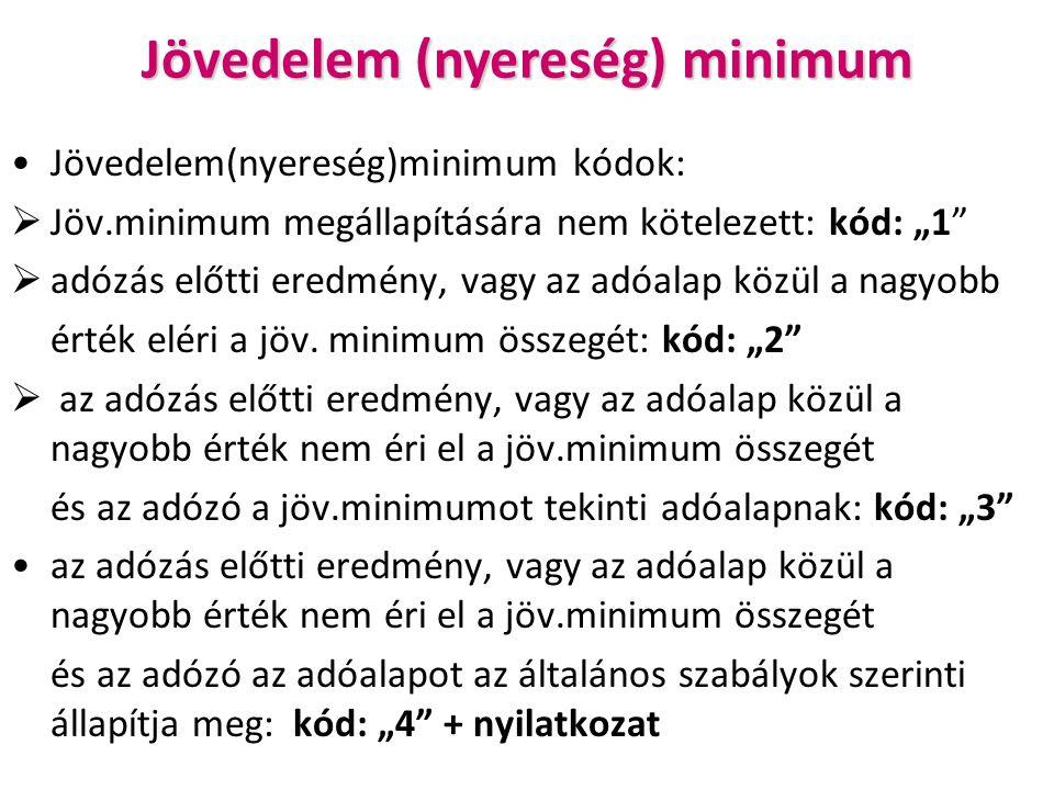 """Jövedelem (nyereség) minimum Jövedelem(nyereség)minimum kódok:  Jöv.minimum megállapítására nem kötelezett: kód: """"1  adózás előtti eredmény, vagy az adóalap közül a nagyobb érték eléri a jöv."""