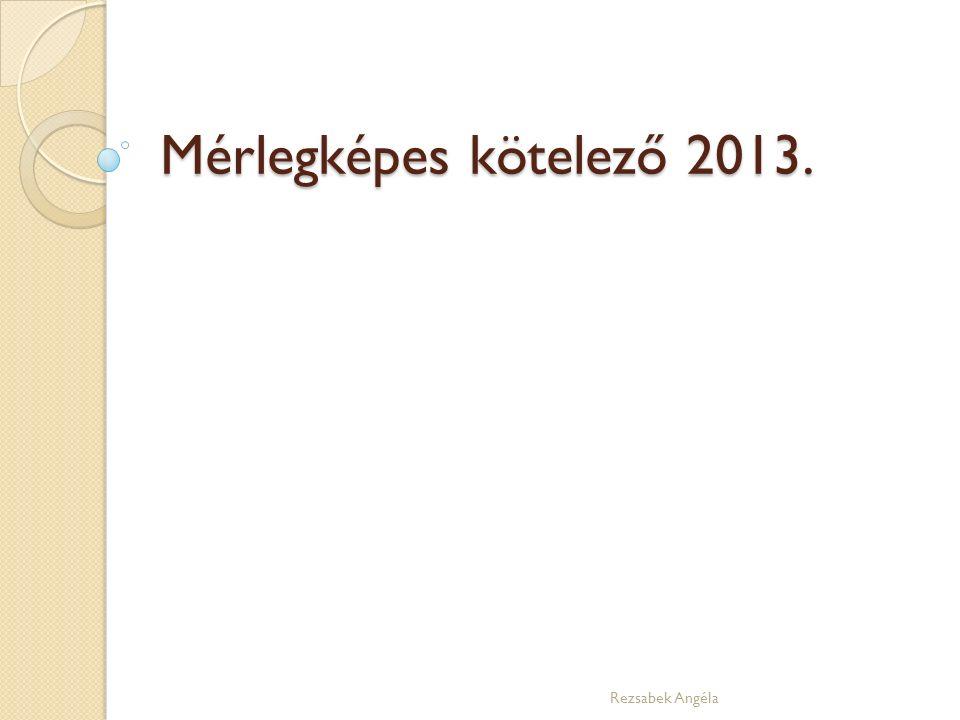 Mérlegképes kötelező 2013. Rezsabek Angéla