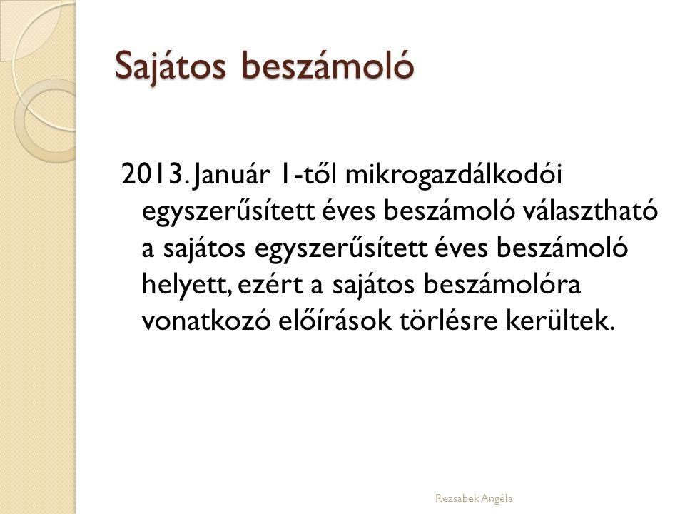 Sajátos beszámoló 2013.