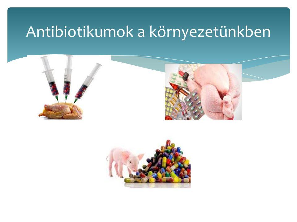  Súlyosabb infekciók, multi-pánrezisztens kórokozók- ne veszítsük el azt a képességünket, hogy az infekciókat meg tudjunk gyógyítani.