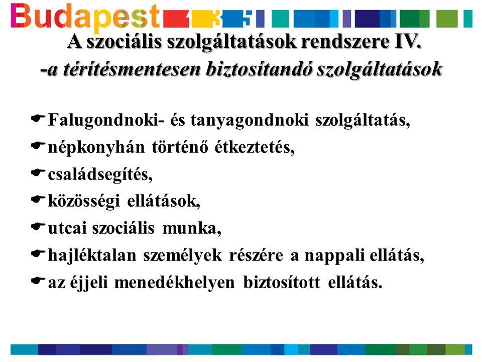 A szociális szolgáltatások rendszere IV.