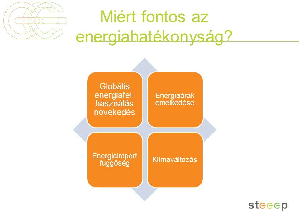 Miért fontos az energiahatékonyság? Globális energiafel- használás növekedés Energiaárak emelkedése Energiaimport függőség Klímaváltozás