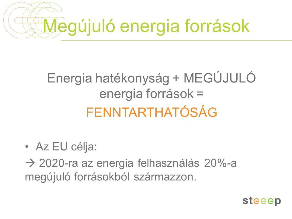 Megújuló energia források Energia hatékonyság + MEGÚJULÓ energia források = FENNTARTHATÓSÁG Az EU célja:  2020-ra az energia felhasználás 20%-a megúj