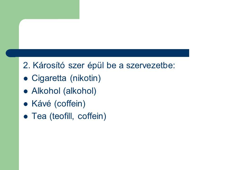 2. Károsító szer épül be a szervezetbe: Cigaretta (nikotin) Alkohol (alkohol) Kávé (coffein) Tea (teofill, coffein)