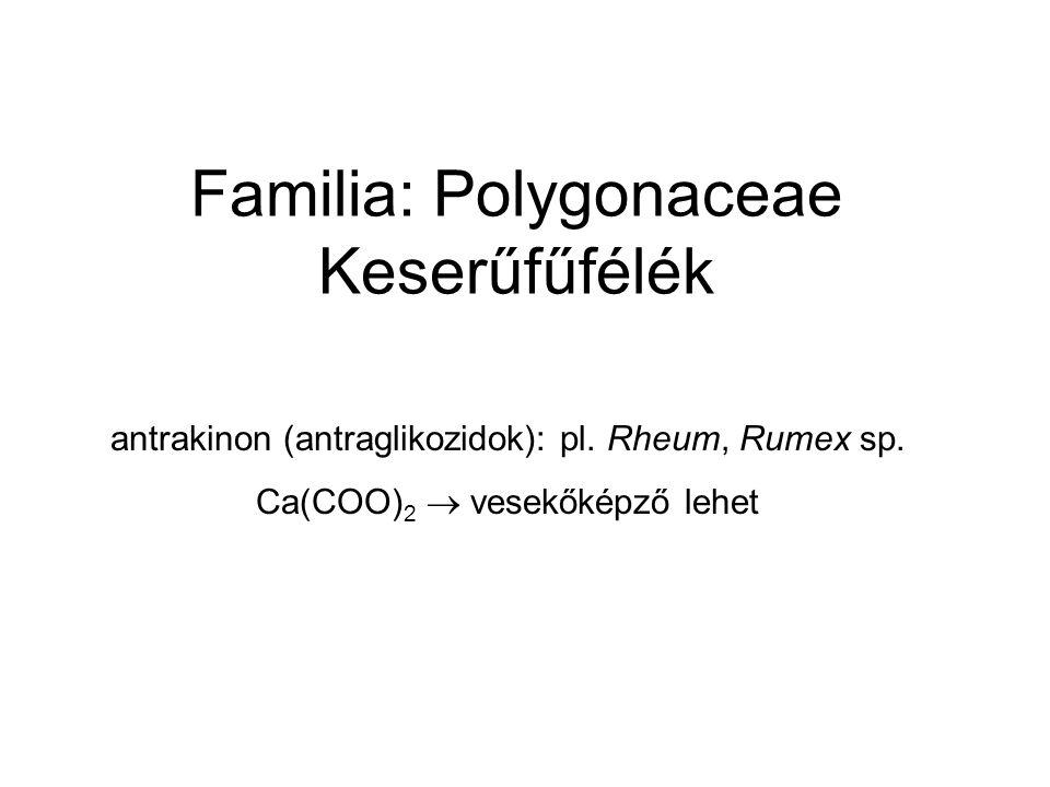 Familia: Polygonaceae Keserűfűfélék antrakinon (antraglikozidok): pl. Rheum, Rumex sp. Ca(COO) 2  vesekőképző lehet