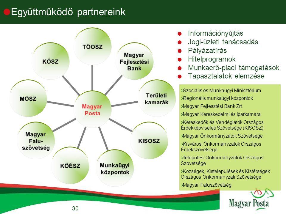 30  Együttműködő partnereink  Információnyújtás  Jogi-üzleti tanácsadás  Pályázatírás  Hitelprogramok  Munkaerő-piaci támogatások  Tapasztalatok elemzése  Szociális és Munkaügyi Minisztérium  Regionális munkaügyi központok  Magyar Fejlesztési Bank Zrt.