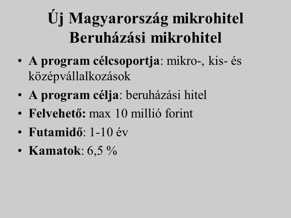 Új Magyarország mikrohitel Beruházási mikrohitel A program célcsoportja: mikro-, kis- és középvállalkozások A program célja: beruházási hitel Felvehet