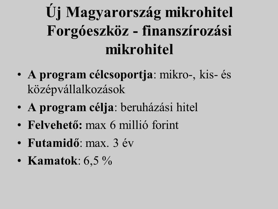 Új Magyarország mikrohitel Forgóeszköz - finanszírozási mikrohitel A program célcsoportja: mikro-, kis- és középvállalkozások A program célja: beruház