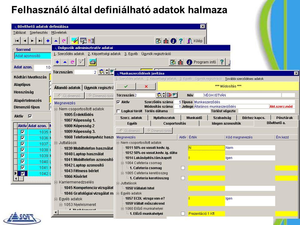 Felhasználó által definiálható adatok halmaza