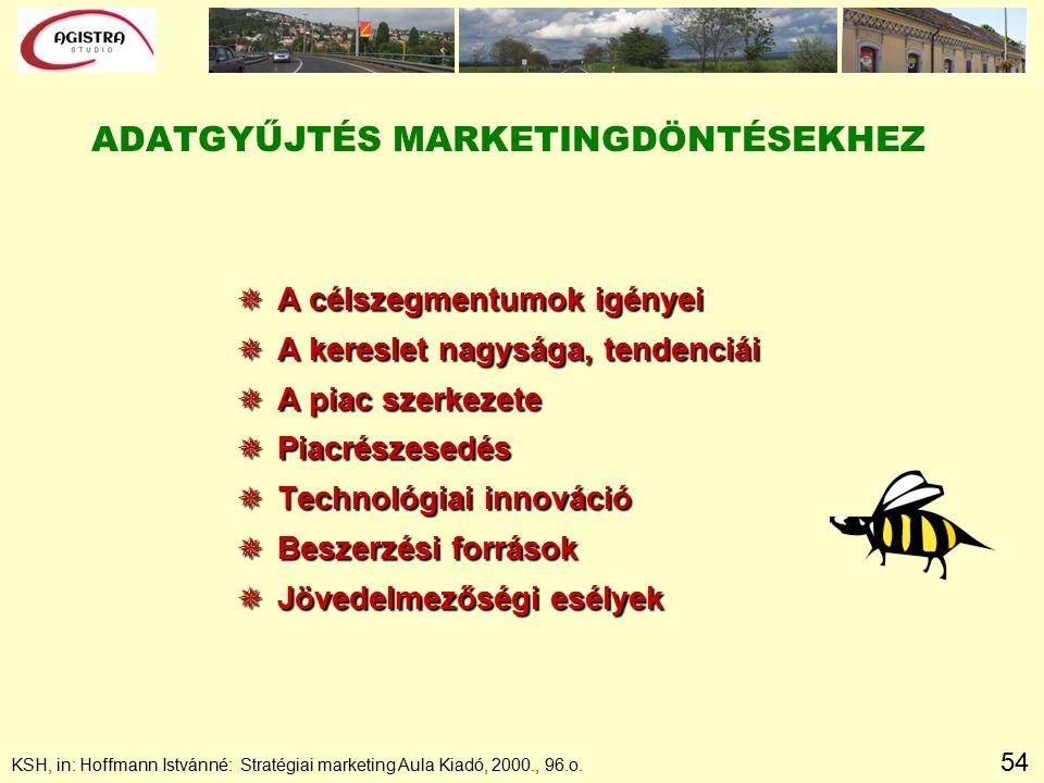 54 ADATGYŰJTÉS MARKETINGDÖNTÉSEKHEZ  A célszegmentumok igényei  A kereslet nagysága, tendenciái  A piac szerkezete  Piacrészesedés  Technológiai