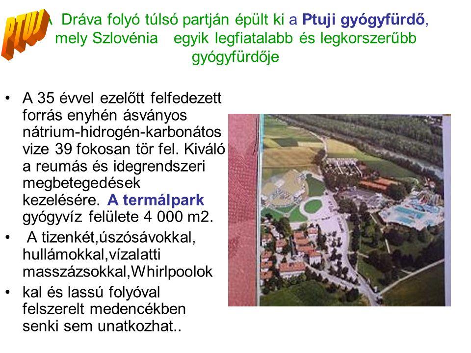 A Dráva folyó túlsó partján épült ki a Ptuji gyógyfürdő, mely Szlovénia egyik legfiatalabb és legkorszerűbb gyógyfürdője A 35 évvel ezelőtt felfedezett forrás enyhén ásványos nátrium-hidrogén-karbonátos vize 39 fokosan tör fel.