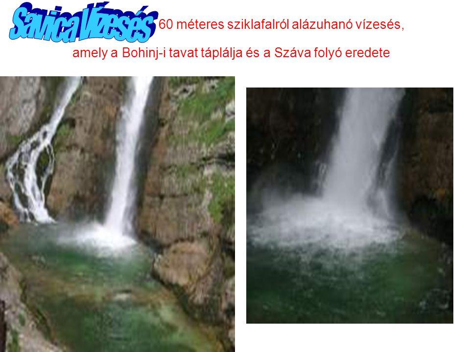 60 méteres sziklafalról alázuhanó vízesés, amely a Bohinj-i tavat táplálja és a Száva folyó eredete