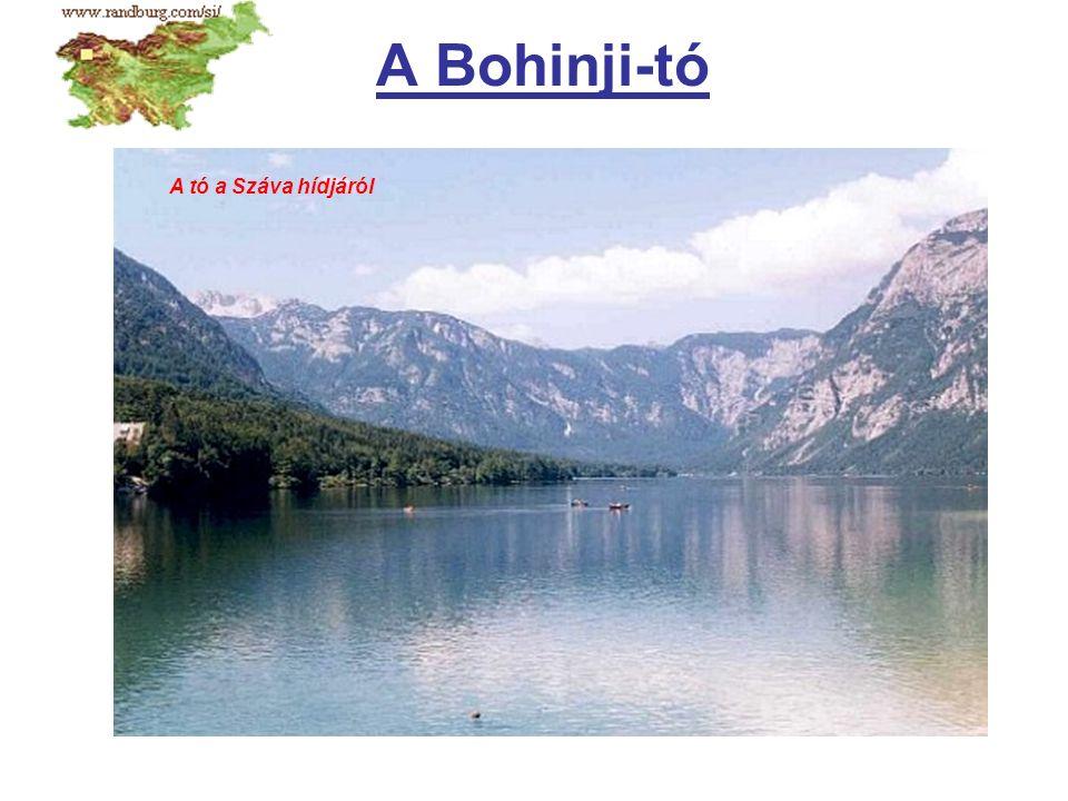 A Bohinji-tó A tó a Száva hídjáról