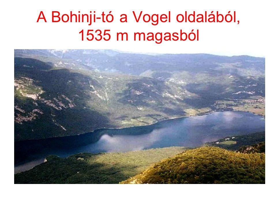 A Bohinji-tó a Vogel oldalából, 1535 m magasból