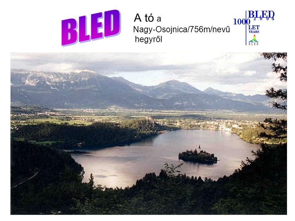 A tó a Nagy-Osojnica/756m/nevű hegyről A tó a Nagy-Osojnica (756m) nevű hegyről