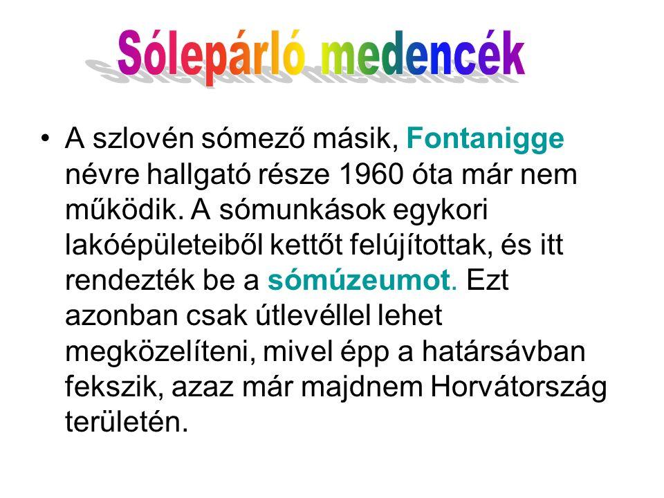A szlovén sómező másik, Fontanigge névre hallgató része 1960 óta már nem működik. A sómunkások egykori lakóépületeiből kettőt felújítottak, és itt ren