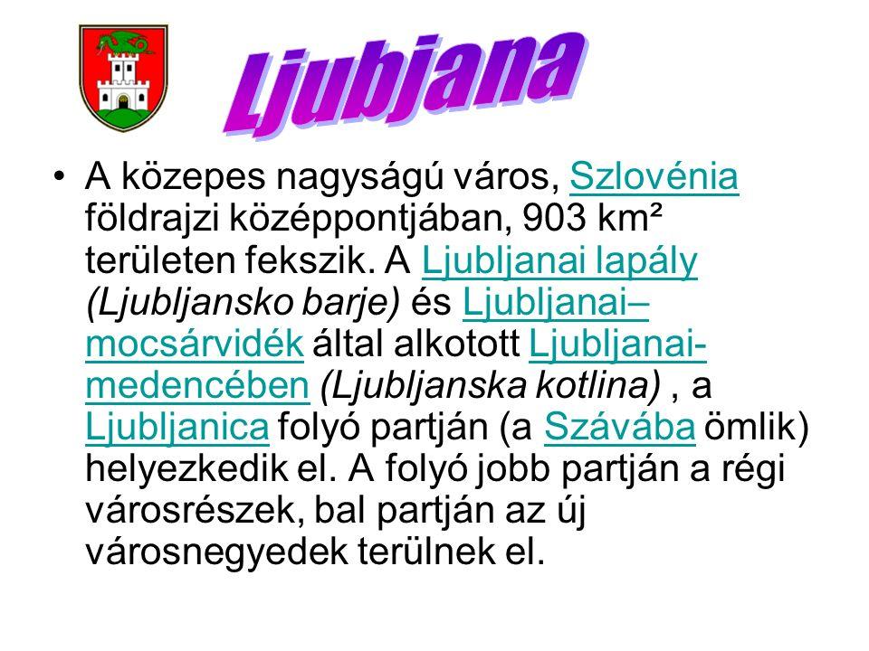 A közepes nagyságú város, Szlovénia földrajzi középpontjában, 903 km² területen fekszik. A Ljubljanai lapály (Ljubljansko barje) és Ljubljanai– mocsár
