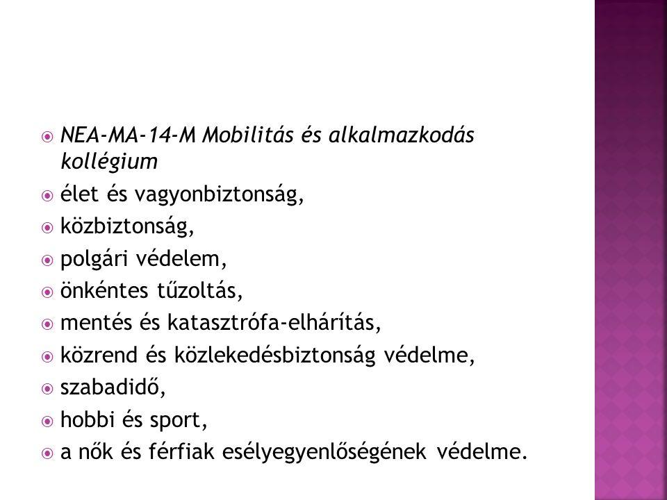  A Tanács 695/2013.(10.07.) sz.