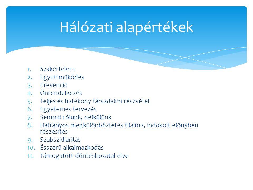 1.Szakértelem 2.Együttműködés 3.Prevenció 4.Önrendelkezés 5.Teljes és hatékony társadalmi részvétel 6.Egyetemes tervezés 7.Semmit rólunk, nélkülünk 8.Hátrányos megkülönböztetés tilalma, indokolt előnyben részesítés 9.Szubszidiaritás 10.Ésszerű alkalmazkodás 11.Támogatott döntéshozatal elve Hálózati alapértékek