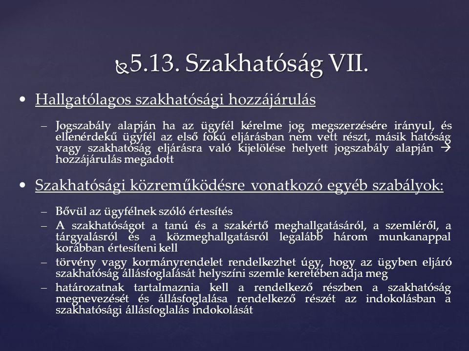 5.13. Szakhatóság VII.