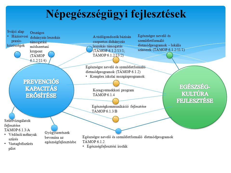 További népegészségügyi prioritást jelentő beavatkozási területek – folytatás Részcélok: A kissúlyú koraszülöttek számának csökkentése és a csecsemőhalálozás mértékének további mérséklése, főként azokon a területeken, ahol a legkedvezőtlenebbek ezen mutatók A védőoltási rendszer fenntartása és folyamatos korszerűsítése Munkahelyi egészséges környezet elősegítésére irányuló programok Népegészségügyi kiadások módszertanilag megalapozottabb számbavétele és az adatgyűjtés fejlesztése; A népegészségügyi szolgáltatások költség-hatékonysági értékelésének módszertani fejlesztése; A népegészségügyi szolgáltatások fenntartható finanszírozásának kialakítása.
