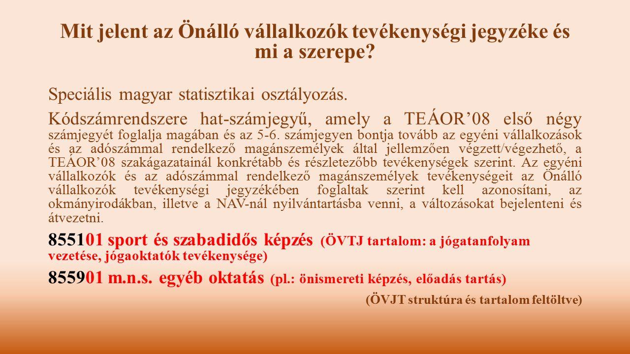 Mit jelent az Önálló vállalkozók tevékenységi jegyzéke és mi a szerepe? Speciális magyar statisztikai osztályozás. Kódszámrendszere hat-számjegyű, ame