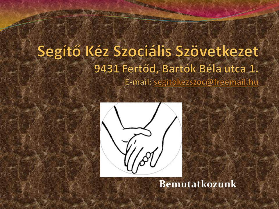 A Segítő Kéz Szociális Szövetkezet azért tartotta nagyon fontosnak az alternatív pedagógiai szolgáltatások révén az ő foglalkoztatásukat, mivel szaktudások, szakmai tapasztalatunk, felbecsülhetetlen érték melynek használaton kívül hagyása a társadalom részéről mérhetetlen pazarlás.