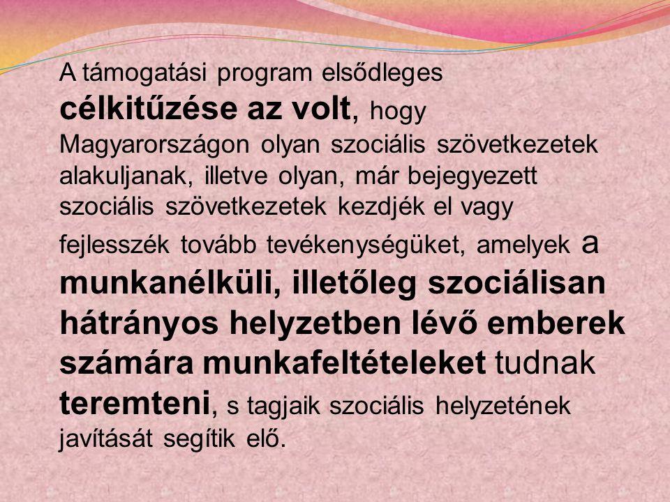 A támogatási program elsődleges célkitűzése az volt, hogy Magyarországon olyan szociális szövetkezetek alakuljanak, illetve olyan, már bejegyezett szociális szövetkezetek kezdjék el vagy fejlesszék tovább tevékenységüket, amelyek a munkanélküli, illetőleg szociálisan hátrányos helyzetben lévő emberek számára munkafeltételeket tudnak teremteni, s tagjaik szociális helyzetének javítását segítik elő.