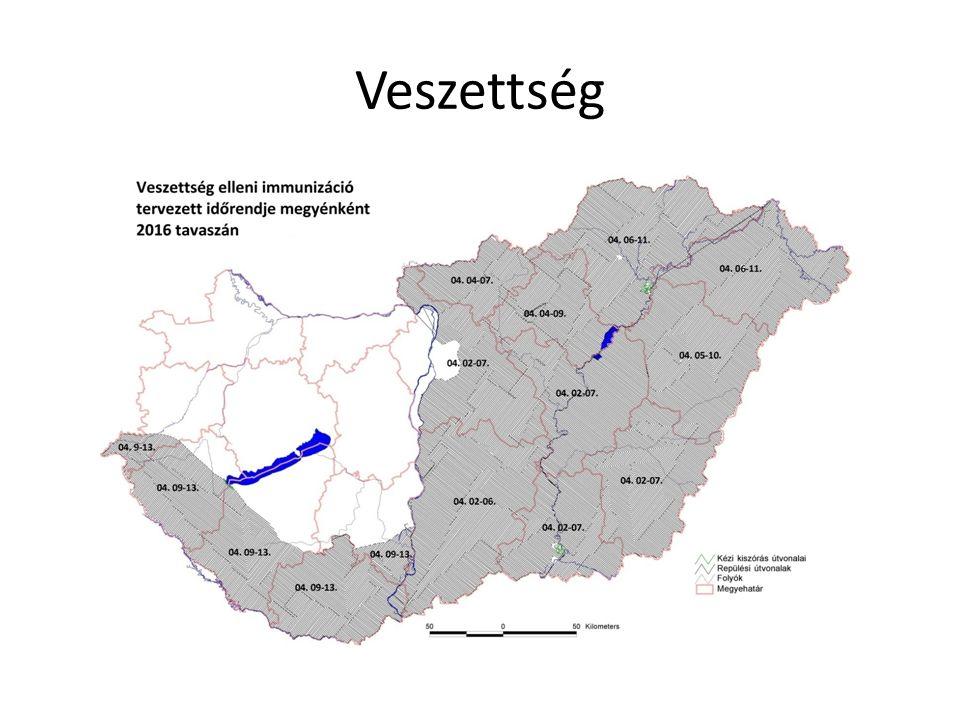 Veszettség rókaszmőzkutyakecske 2013 ősz222--- 2014200111 20161---- 2013-14: Az esetek három megyére korlátozódtak ( Pest, Jász-Nagykun-Szolnok, Bács-Kiskun) 2016: Egy eset Borsod-Abaúj-Zemplén megyében Kiterjesztett vakcinázási kampány évente 2x