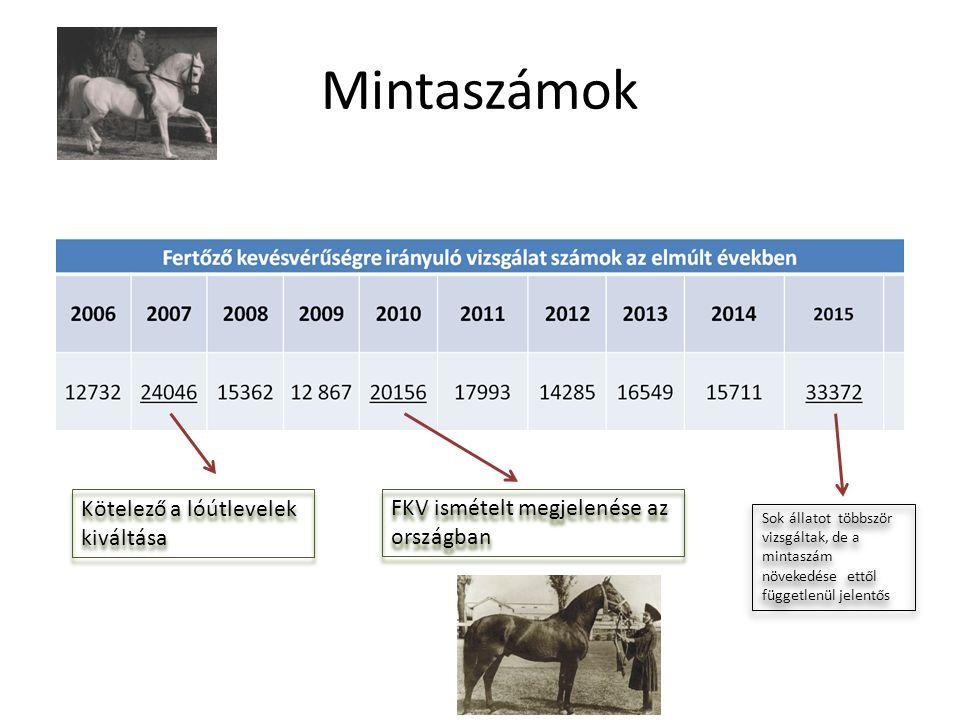 Mintaszámok Kötelező a lóútlevelek kiváltása FKV ismételt megjelenése az országban Sok állatot többször vizsgáltak, de a mintaszám növekedése ettől függetlenül jelentős