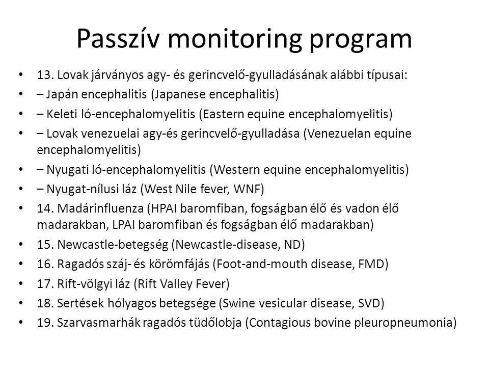 Passzív monitoring program 13.