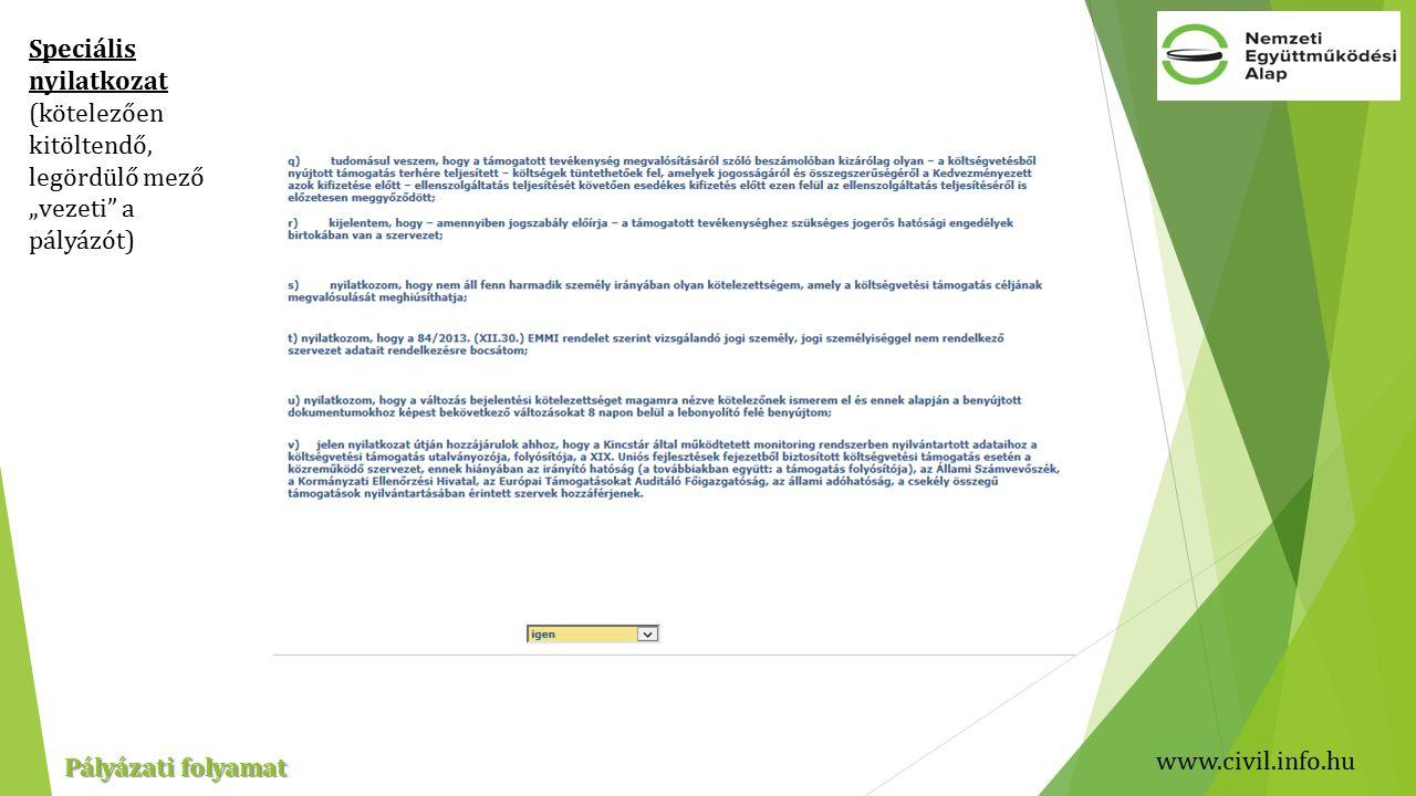 """www.civil.info.hu Pályázati folyamat Speciális nyilatkozat (kötelezően kitöltendő, legördülő mező """"vezeti a pályázót)"""