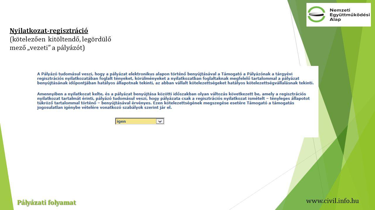 """www.civil.info.hu Pályázati folyamat Nyilatkozat-regisztráció (kötelezően kitöltendő, legördülő mező """"vezeti a pályázót)"""