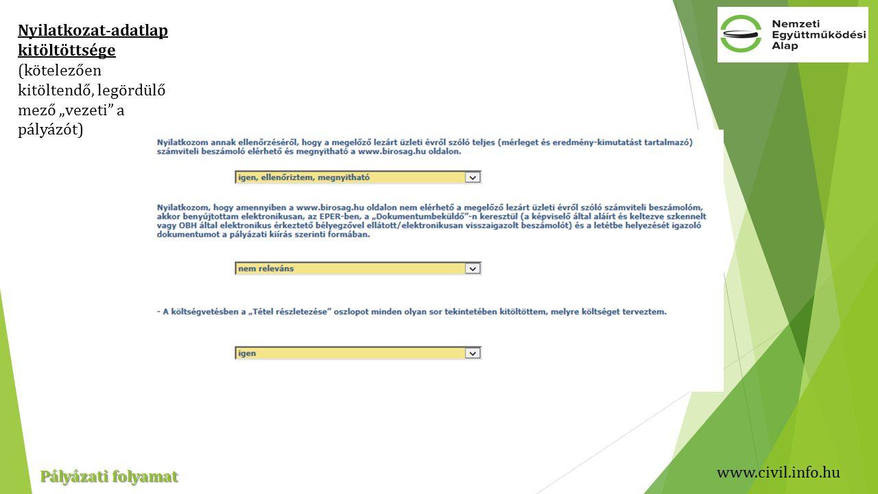 """www.civil.info.hu Pályázati folyamat Nyilatkozat-adatlap kitöltöttsége (kötelezően kitöltendő, legördülő mező """"vezeti a pályázót)"""