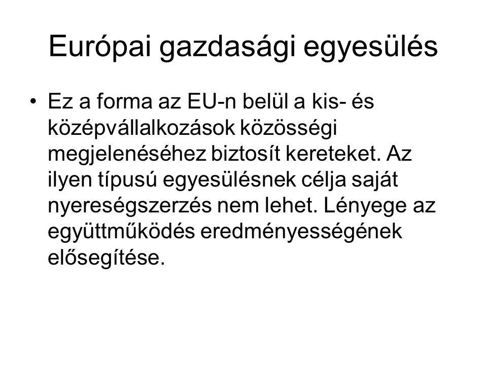 Európai gazdasági egyesülés Ez a forma az EU-n belül a kis- és középvállalkozások közösségi megjelenéséhez biztosít kereteket.