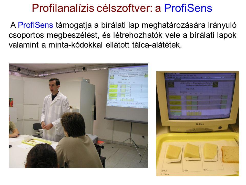A ProfiSens támogatja a bírálati lap meghatározására irányuló csoportos megbeszélést, és létrehozhatók vele a bírálati lapok valamint a minta-kódokkal ellátott tálca-alátétek.
