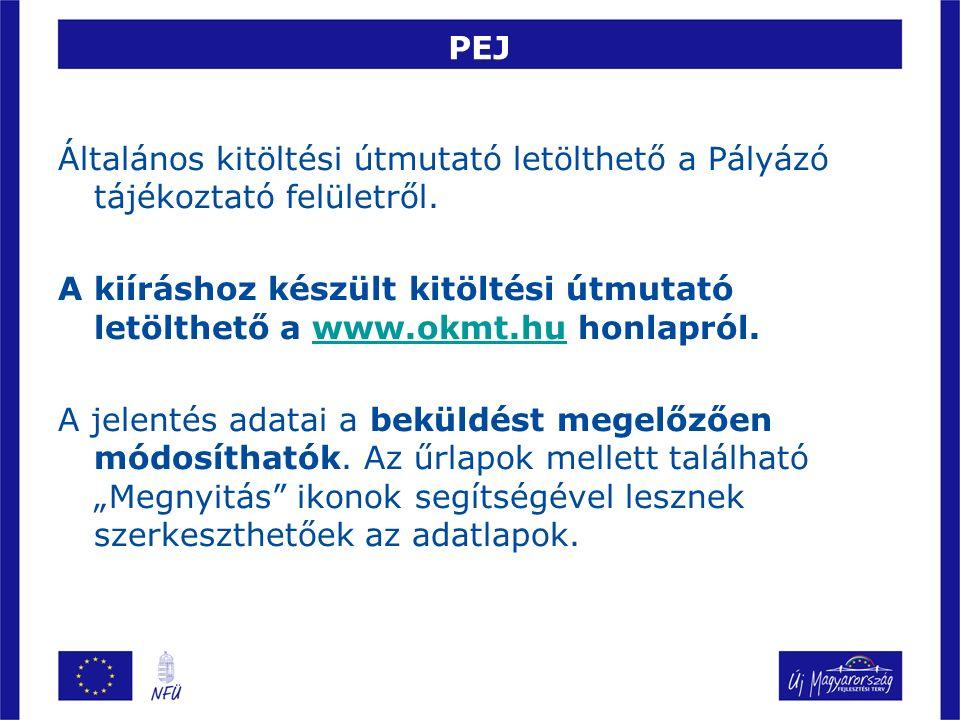 PEJ Általános kitöltési útmutató letölthető a Pályázó tájékoztató felületről.