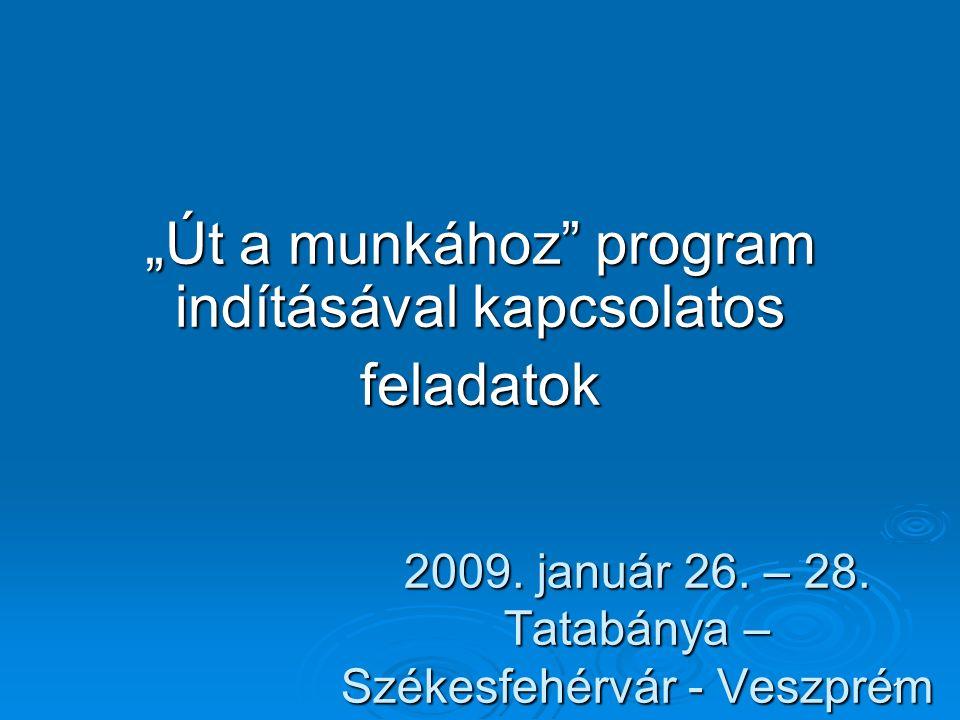 """1 2009. január 26. – 28. Tatabánya – Székesfehérvár - Veszprém """"Út a munkához"""" program indításával kapcsolatos feladatok"""