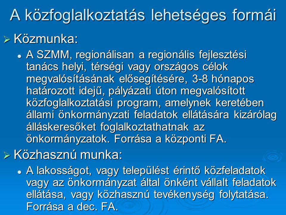A közfoglalkoztatás lehetséges formái  Közmunka: A SZMM, regionálisan a regionális fejlesztési tanács helyi, térségi vagy országos célok megvalósításának elősegítésére, 3-8 hónapos határozott idejű, pályázati úton megvalósított közfoglalkoztatási program, amelynek keretében állami önkormányzati feladatok ellátására kizárólag álláskeresőket foglalkoztathatnak az önkormányzatok.