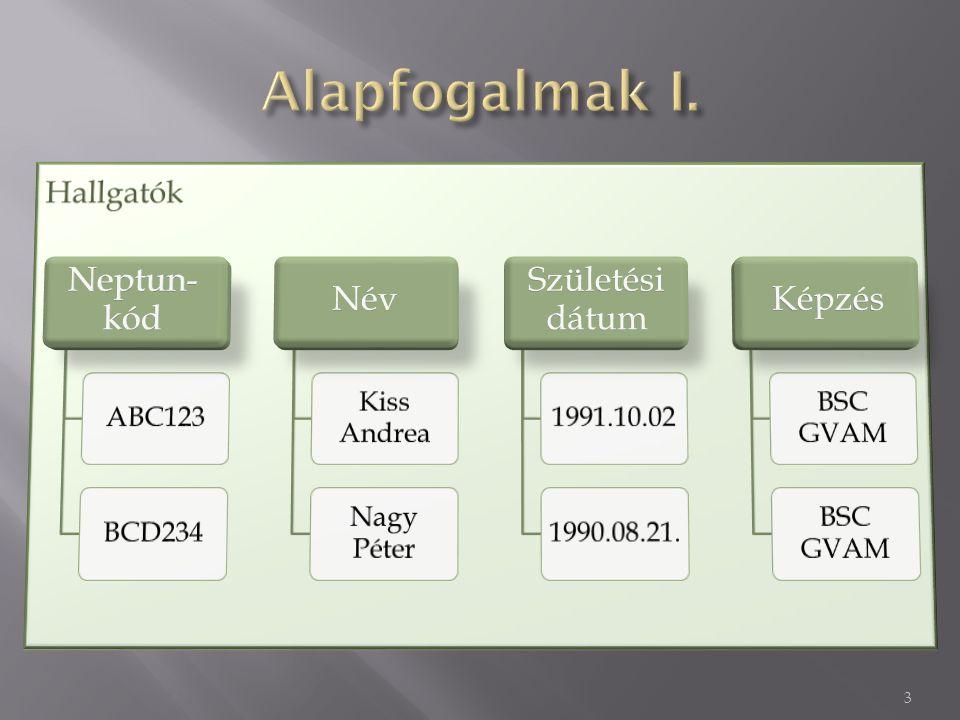 4  Kulcs: Olyan tulajdonság (vagy tulajdonság- halmaz), amely segítségével az egyedek egyértelműen azonosíthatók (pl.
